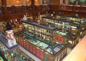 intérieur-du-musée-testut-latarje-photo-thanks-to-wikipedia-user